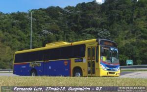 193 por Fernando Luiz